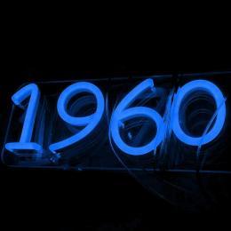 Pack Tira Neón Azul LED 6mm 12V + Fuente de Alimentación - Imagen 2