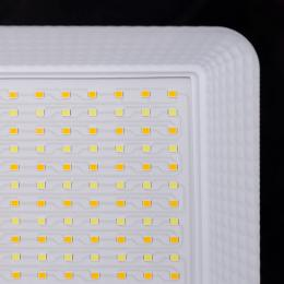 Proyector LED SMD Lumileds 50W 130Lm/W IP65 IP65 50000H Temperatura de Color Regulable - Imagen 2