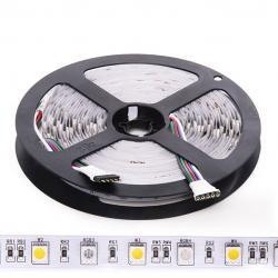Tira LED 5M 300 LEDs 60W SMD5050 24VDC IP20 RGB+Blanco Cálido