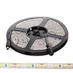 Tira LED SMD5054 12VDC 10Mm X 5M 60Xm 1380Lm/M IP65