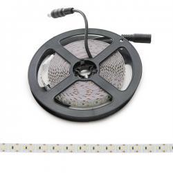 Tira LED 204Xm SMD3014 12Wm 12VDC 5M IP20