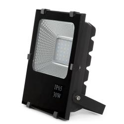 Foco Proyector LED 30W
