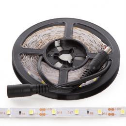 Kit Tira 300 LEDs 24W Blanco Frío Blister Transformador IP25 - Imagen 2