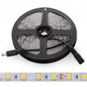 Tira LED 5M 300 LEDs 60W SMD5050 24VDC IP25
