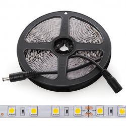 Tira LED 5M 300 LEDs 60W SMD5050 24VDC IP25