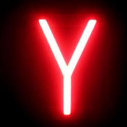 Letra LED Neon Y Ancho 105Mm Alto 161Mm Fondo 38Mm - Imagen 2